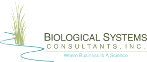 Biological Systems Consultants, Inc. | Ecological Assessment | Stream Restoration |