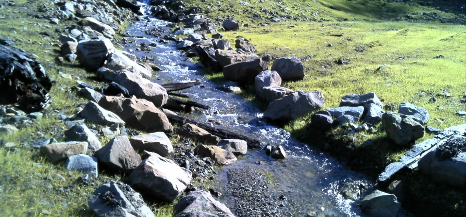 Stream and Wetland Mitigation Design and Monitoring