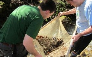 Benthic Macroinvertebrate Survey Aquatic Assessment Ecological Assessment