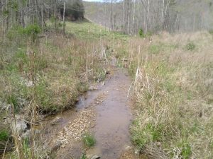 KY Stream Restoration